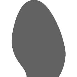 forma della pianta